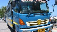 Phuket buses